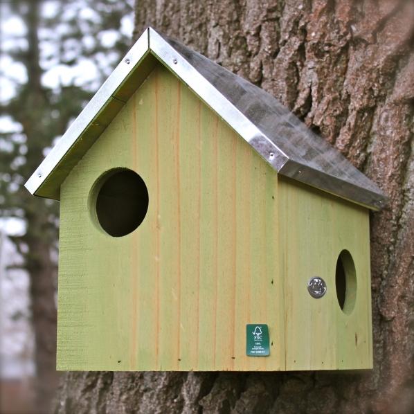 ein heim f r tiere schaffen vogel und. Black Bedroom Furniture Sets. Home Design Ideas
