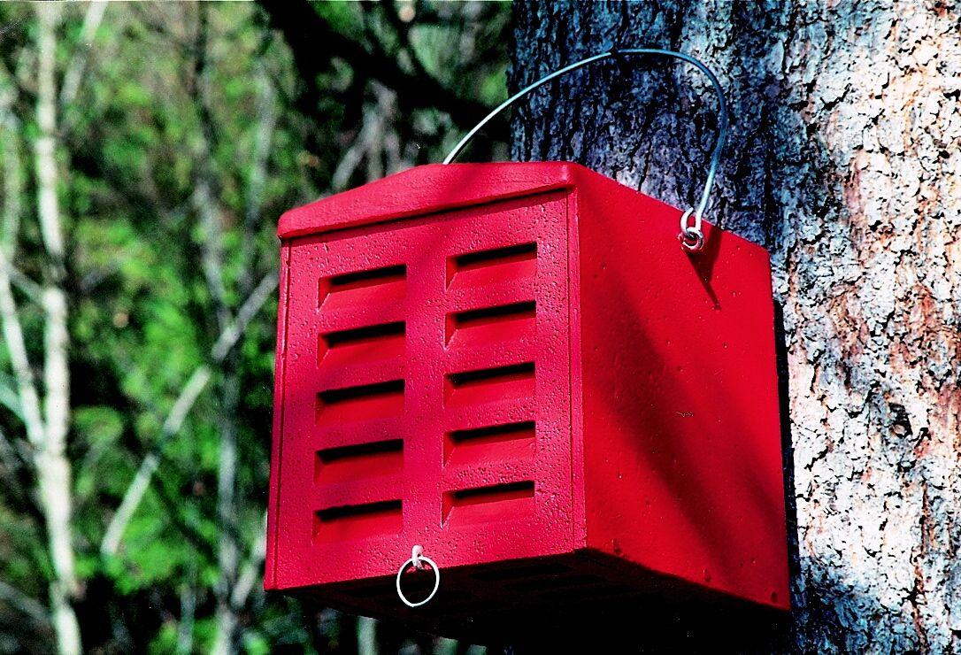 florfliegenkasten selber bauen mit bauanleitung vogel und naturschutzprodukte einfach online. Black Bedroom Furniture Sets. Home Design Ideas