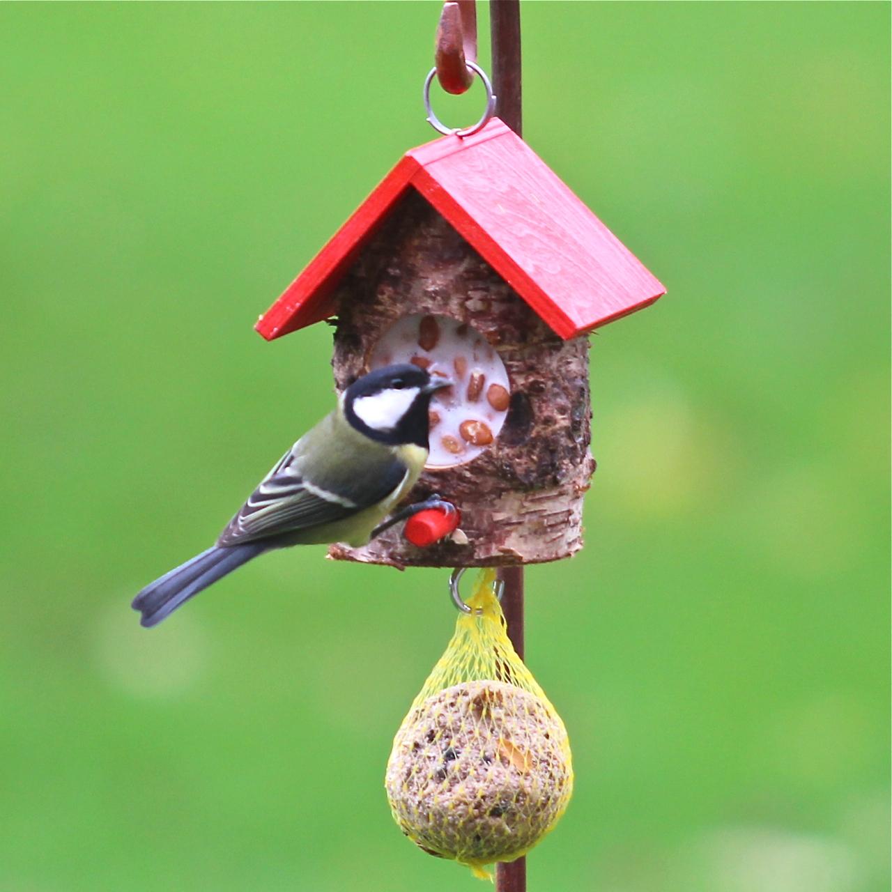 kn del haus klein rot mit vogelfutter und rindertalg vogel und naturschutzprodukte einfach. Black Bedroom Furniture Sets. Home Design Ideas