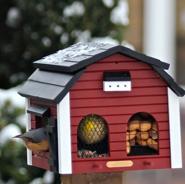 mit einem futterhaus k nnen sie v gel aus n chster n he beobachten vogel und. Black Bedroom Furniture Sets. Home Design Ideas