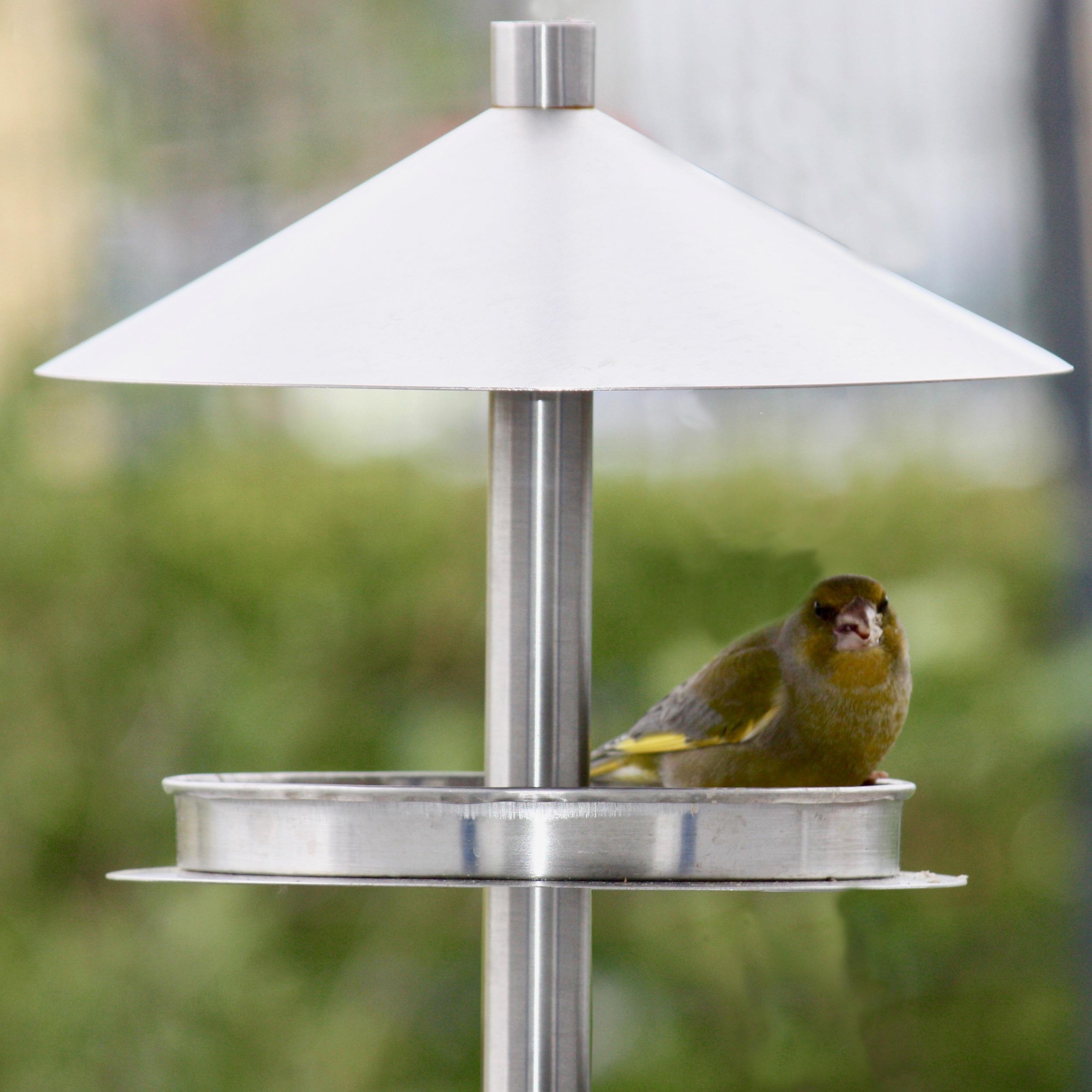 design futterhaus edelstahl mit ständer - vogel- und