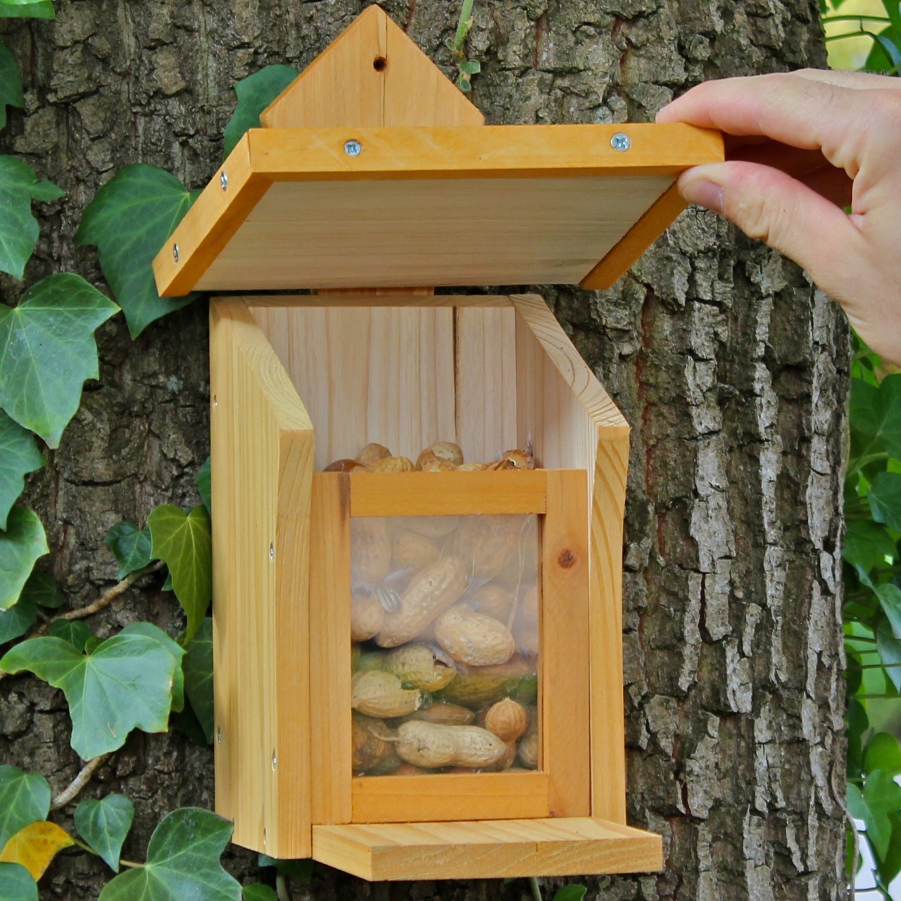 eichh rnchen natur futterkasten vogel und naturschutzprodukte einfach online kaufen. Black Bedroom Furniture Sets. Home Design Ideas