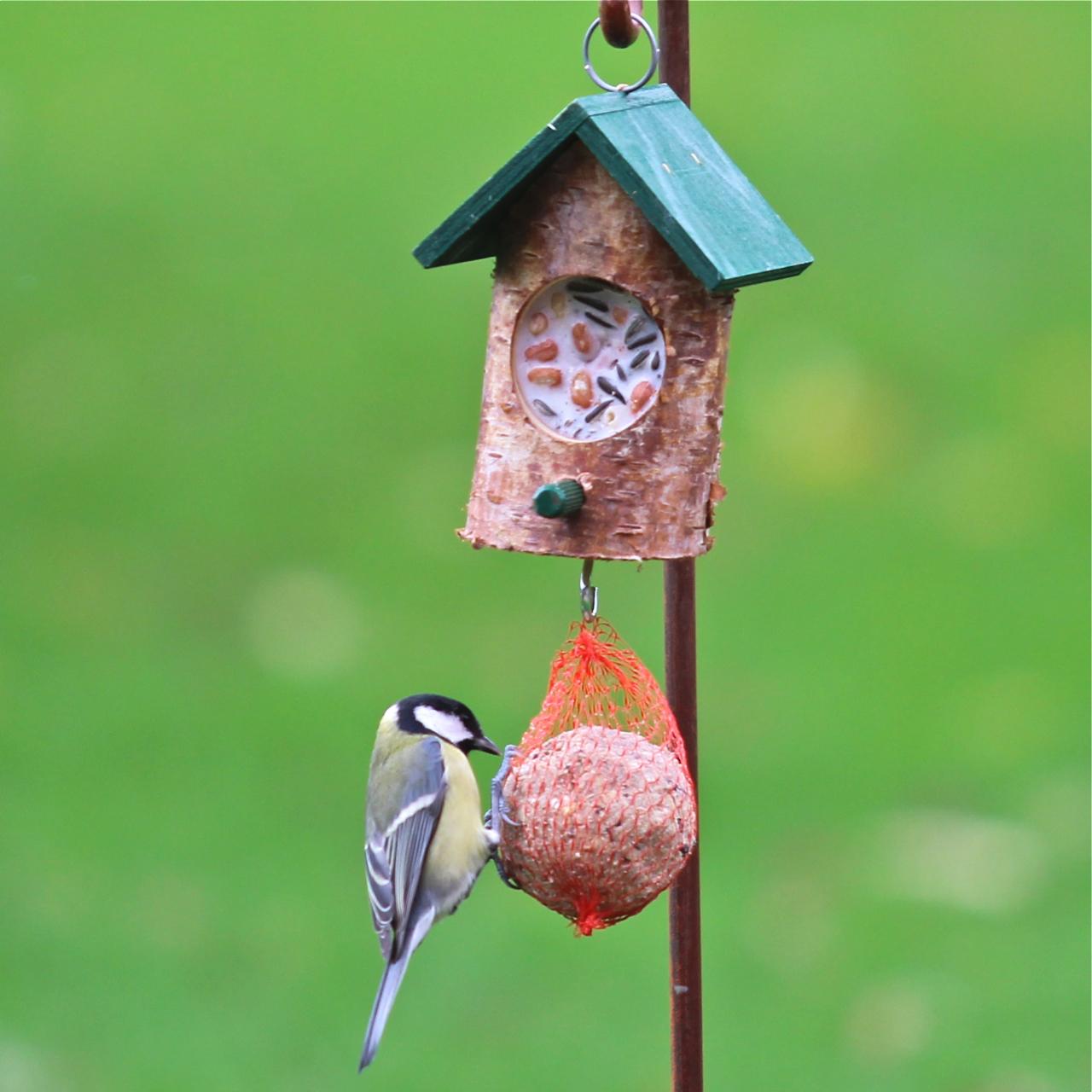 kn delhaus klein gr n mit vogelfutter und rindertalg vogel und naturschutzprodukte einfach. Black Bedroom Furniture Sets. Home Design Ideas