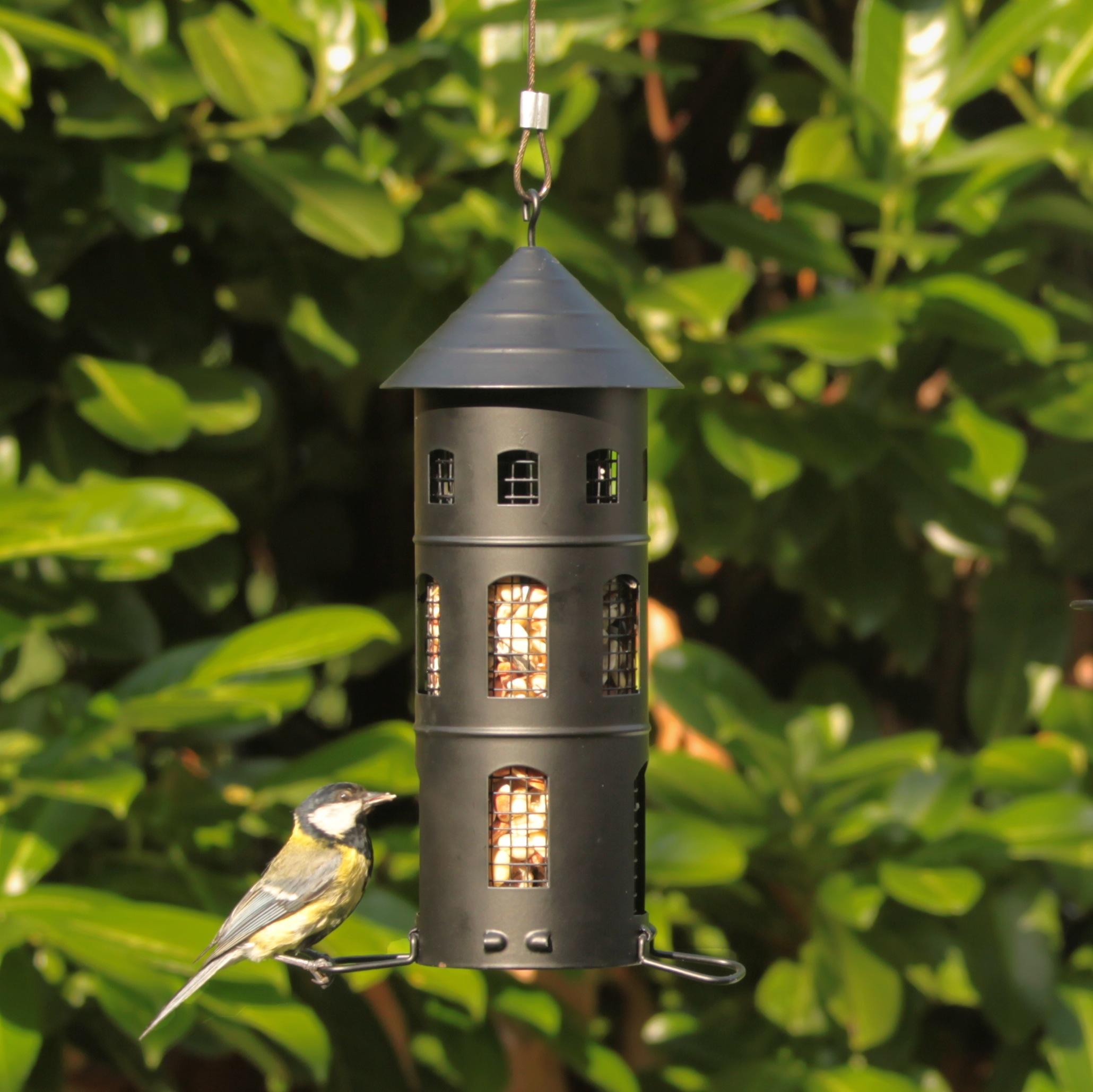 kombi haus schwarz wildlife garden vogel und. Black Bedroom Furniture Sets. Home Design Ideas