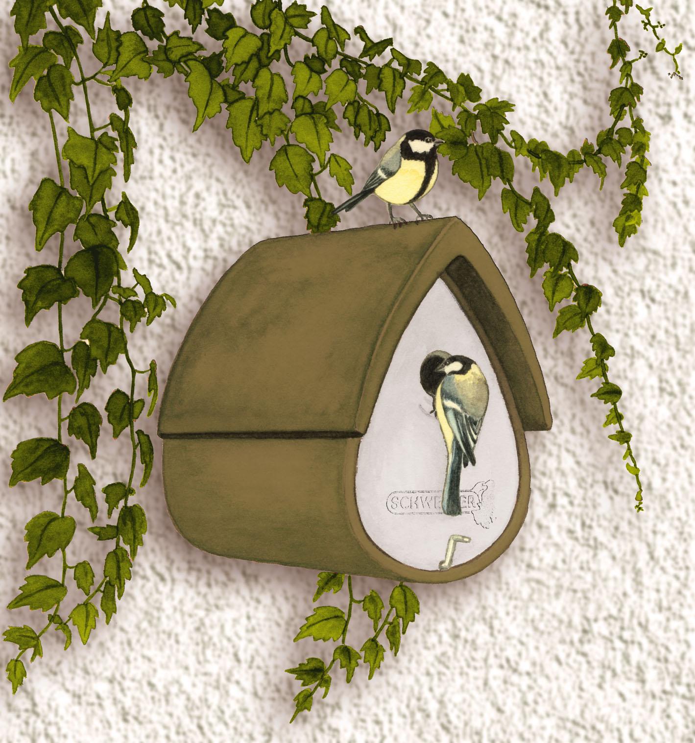 schwegler meisenresidenz 1mr gr n vogel und naturschutzprodukte einfach online kaufen. Black Bedroom Furniture Sets. Home Design Ideas
