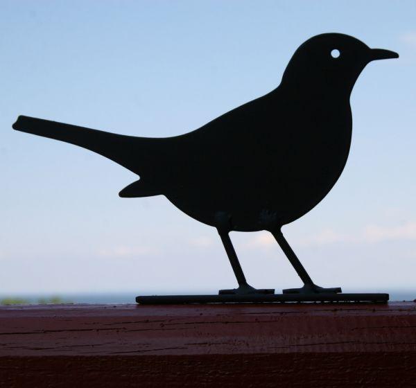 amsel silhouette vogel und naturschutzprodukte einfach. Black Bedroom Furniture Sets. Home Design Ideas