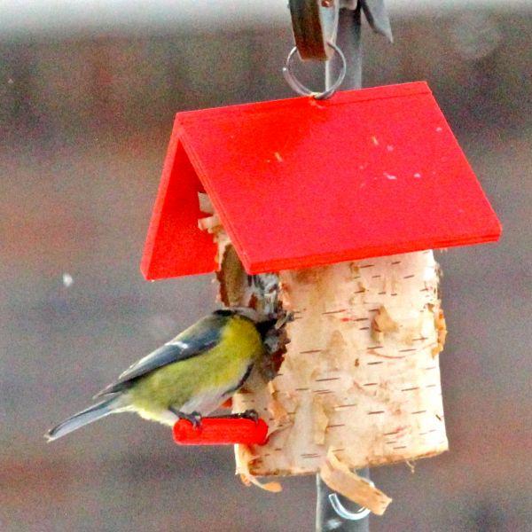 kn del haus rot mit vogelfutter und rindertalg vogel und naturschutzprodukte einfach online. Black Bedroom Furniture Sets. Home Design Ideas
